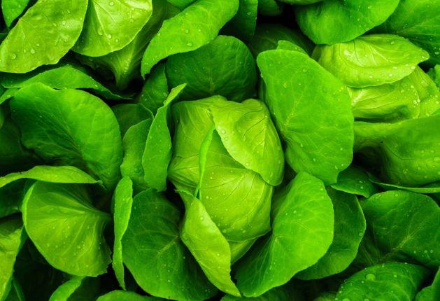 Đảm bảo nguồn nguyên liệu tươi sạch thì cháo dinh dưỡng mới tươi ngon!